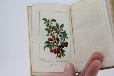 La Corbeille de Fruits - Charles Malo, Paris 1818